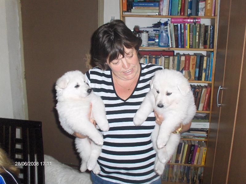 gretha-gina-pups